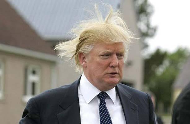 TrumpHair.jpg